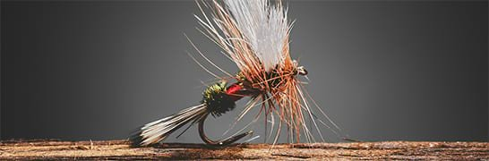TROTE Mosche Fly Fishing ardiglione MOSCHE